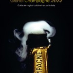 Copertina guida champagne