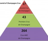 The Champagne Cru classification