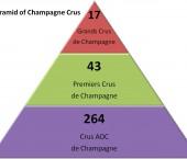 La classificazione dei cru in Champagne